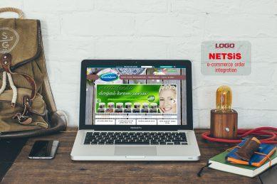 Mecitefendi.com – Netsis Entegrasyonu